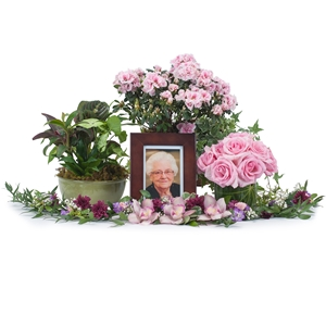 Lovely Lady Tribute - As Shown